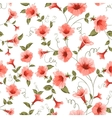 Bindweed floral background seamless pattern vector image