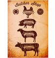 diagram cut carcasses of chicken pig cow lamb vector image