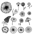 Collection of hand painted flowers background vector image