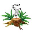 A playful lemur above a stump vector image