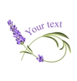 Your text template vector image vector image