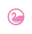 swan logo and symbols animals template icons vector image