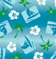 surfer pattern vector image