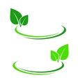 Background with green leaf vector image