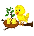 Cartoon Mother and baby bird vector image