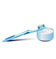 toothbrush and tooth powder vector image