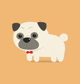 cute pug dog with red ribbon on neck vector image