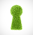 Green leaves keyhole vector image