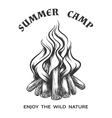 poster with hand drawn campfire vector image