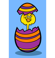 chick in easter egg cartoon vector image vector image