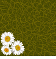 Background from grass and flowers of camomile vector image