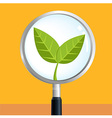 LeafSearch vector image