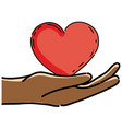 cute hands with nice heart design vector image