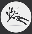 Pruning secateurs vector image vector image