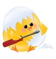 Chick holding screwdriver vector image vector image