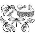 dragonflies vector image