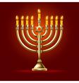 Hanukkah vector image