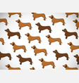 awesome greeting horizontal card with dogs breed vector image