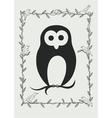 Owl bird in frame vector image