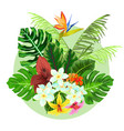 colorful tropical plants design vector image