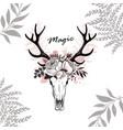 Magic horn deer floral vector image