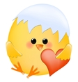 Chick with heart vector image vector image
