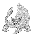 Exotic tropical crab vector image