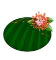 Beautiful Red Ixora Flowers on Banana Leaf vector image