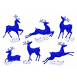 Collection of blue deer vector image