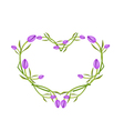 Purple Tulips Flowers in A Heart Shape vector image