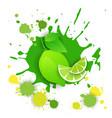 lime fruit logo watercolor splash design fresh vector image