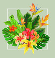 abstract exotic tropical leaf and flowers vector image