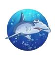 Hammerhead shark cartoon image vector image