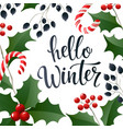 hello winter lettering banner for web or social vector image