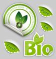 Organic Food Eco Bio Labels vector image