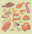 sea food hand drawn doodle with fish crab vector image