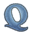 Jeans alphabet Denim letter Q vector image vector image