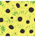 floral pattern with yellow sunflowers vector image vector image