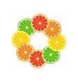 Citrus ring vector image