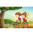 A couple riding on a bicycle vector image