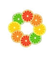 Citrus ring vector image