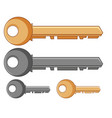 silver and golden keys vector image