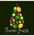 Farm fruits flat icons in shape of pear emblem vector image vector image
