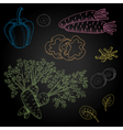 Set hand-drawn food ingredients on chalkboard vector image