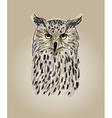 Design owls vector image