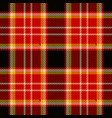 plaid fabric vector image