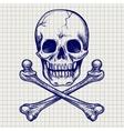 Skull and crossbones ball pen sketch vector image vector image