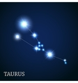 Taurus Zodiac Sign of the Beautiful Bright Stars vector image