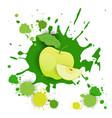 apple fruit logo watercolor splash design fresh vector image