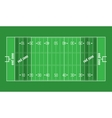 Grass Textured American Football Field vector image